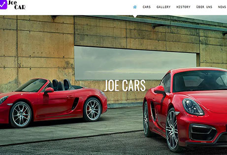 Joe WP WordPress Agency - Website Sales