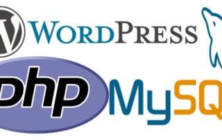 JoeWP WordPress Agentur - Wordpress Voraussetzungen