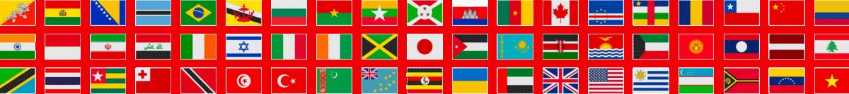 WordPress Multilingual by JoeWP WP Agency